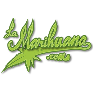 Northsight Capital signs option to acquire LAMARIHUANA.COM, the Spanish Community's Premier Cannabis Portal